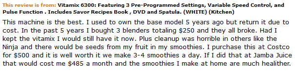 Vitamix 6300 Customer Review Worth the Money