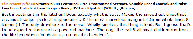 Vitamix 6300 Customer Review on how loud and noisy